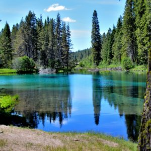 The Wood river head waters comes up in Jackson Kimball State Park, Oregon and flows down to Agency Lake. It is well known for trout fishing and kayaking.